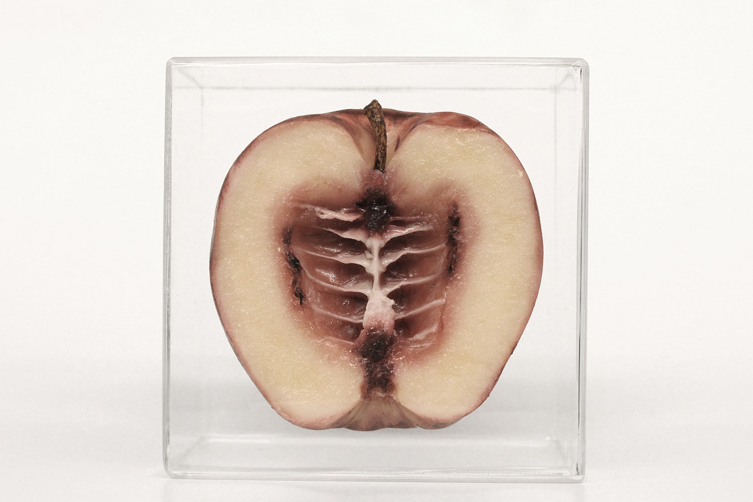 Monica Piloni - Apple, Hybrid series