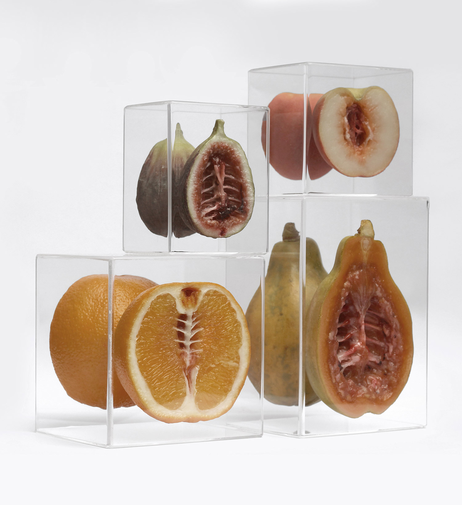 Monica Piloni - Fig, Orange, Papaya, Peach, Hybrid series