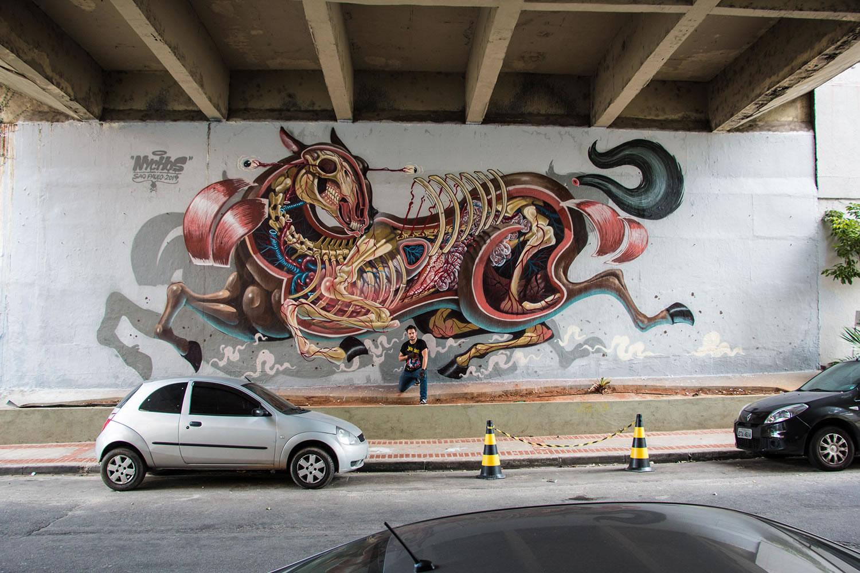 horse skeleton, mural