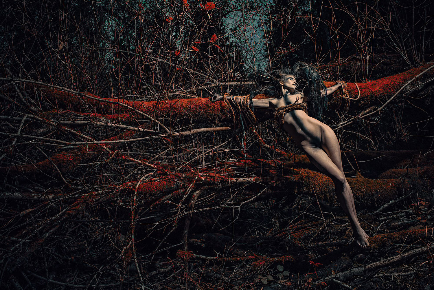 Stefan Gesell - Surreal Wood, model KC