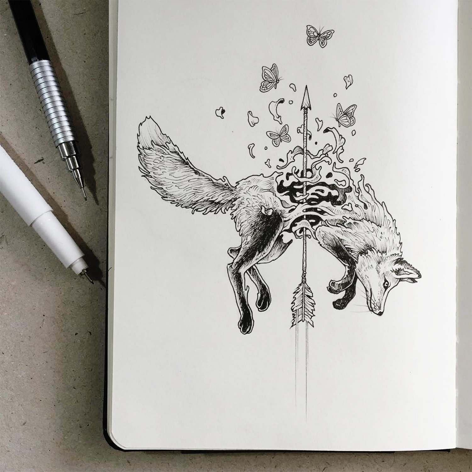 fox drawing by kerby rosanes