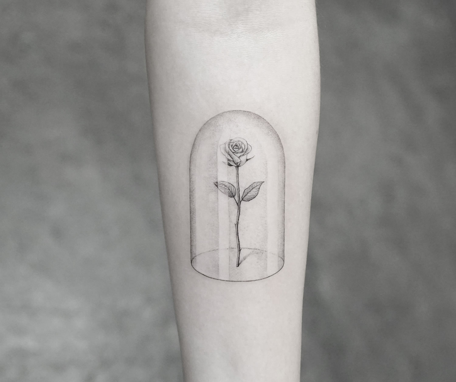 rose in a glass dome, tattoo by mr k, micro design