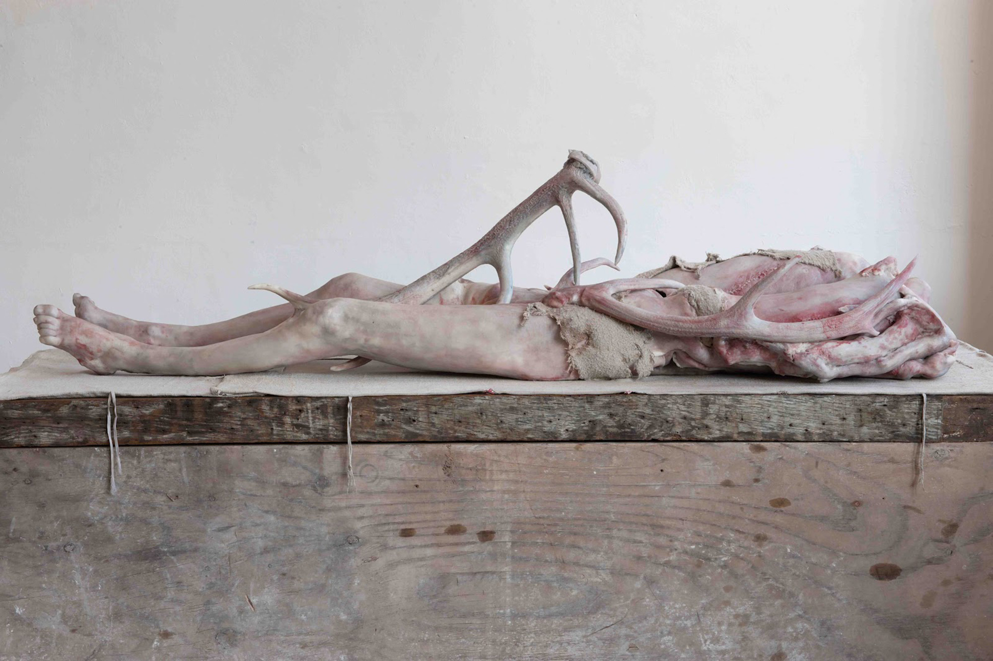 Tenderness for the Dead: Sculptures by Berlinde de Bruyckere
