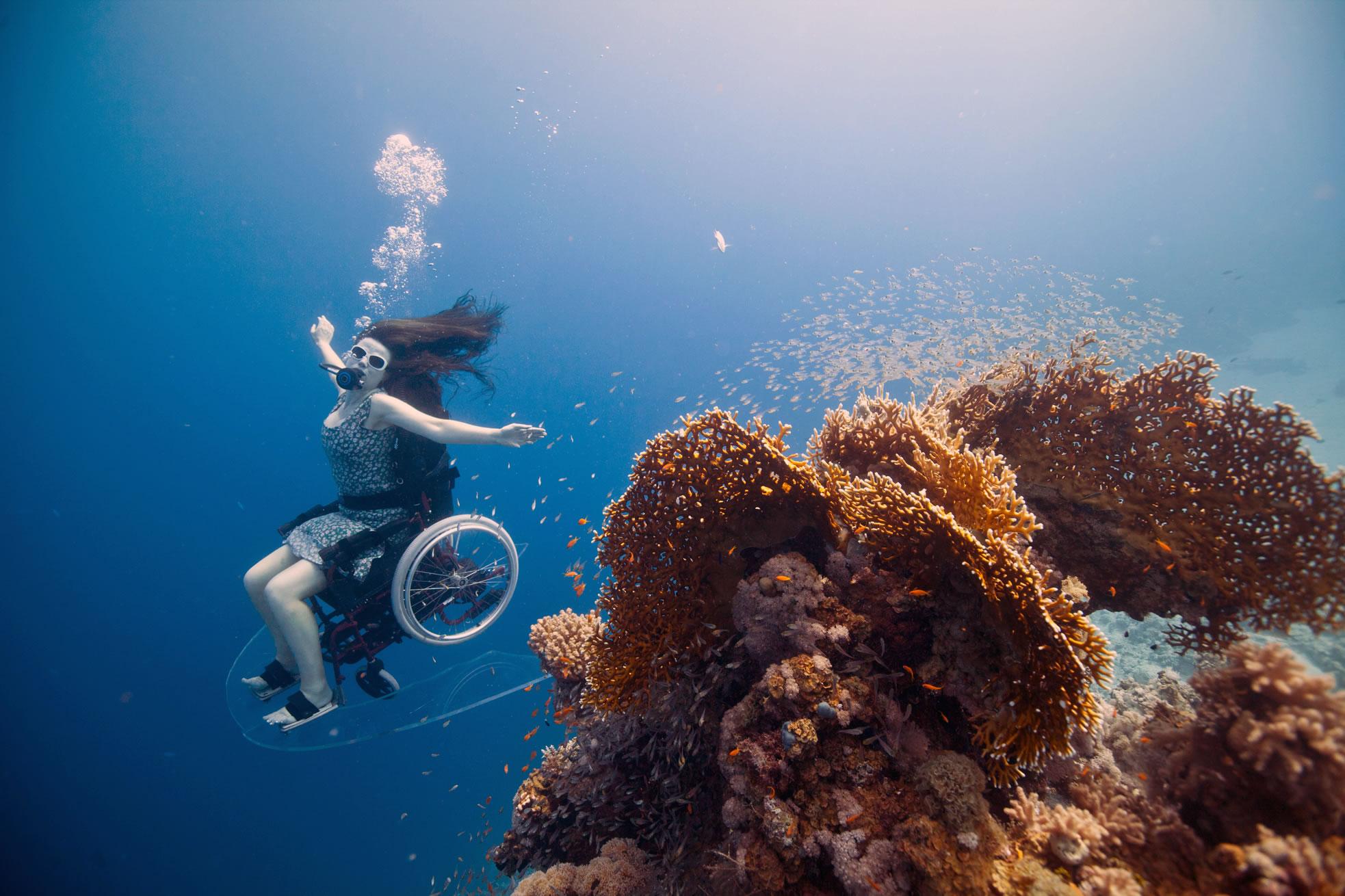 underwater photo by sue austin