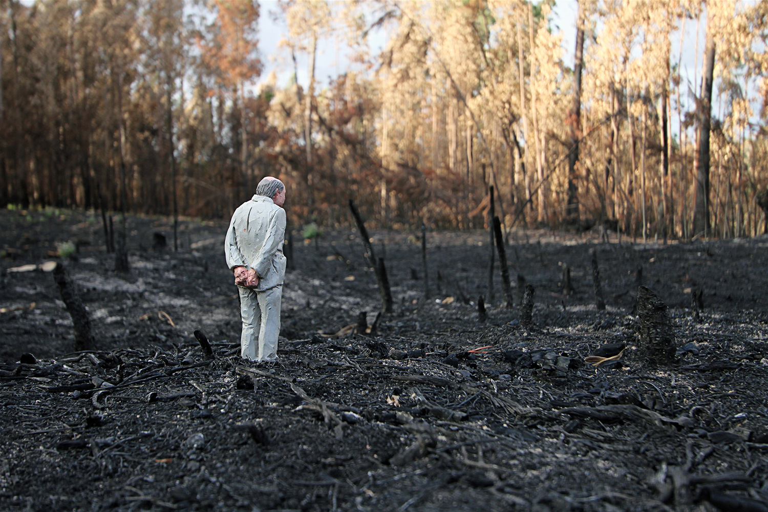 Isaac Cordal - old man in burned-out forest