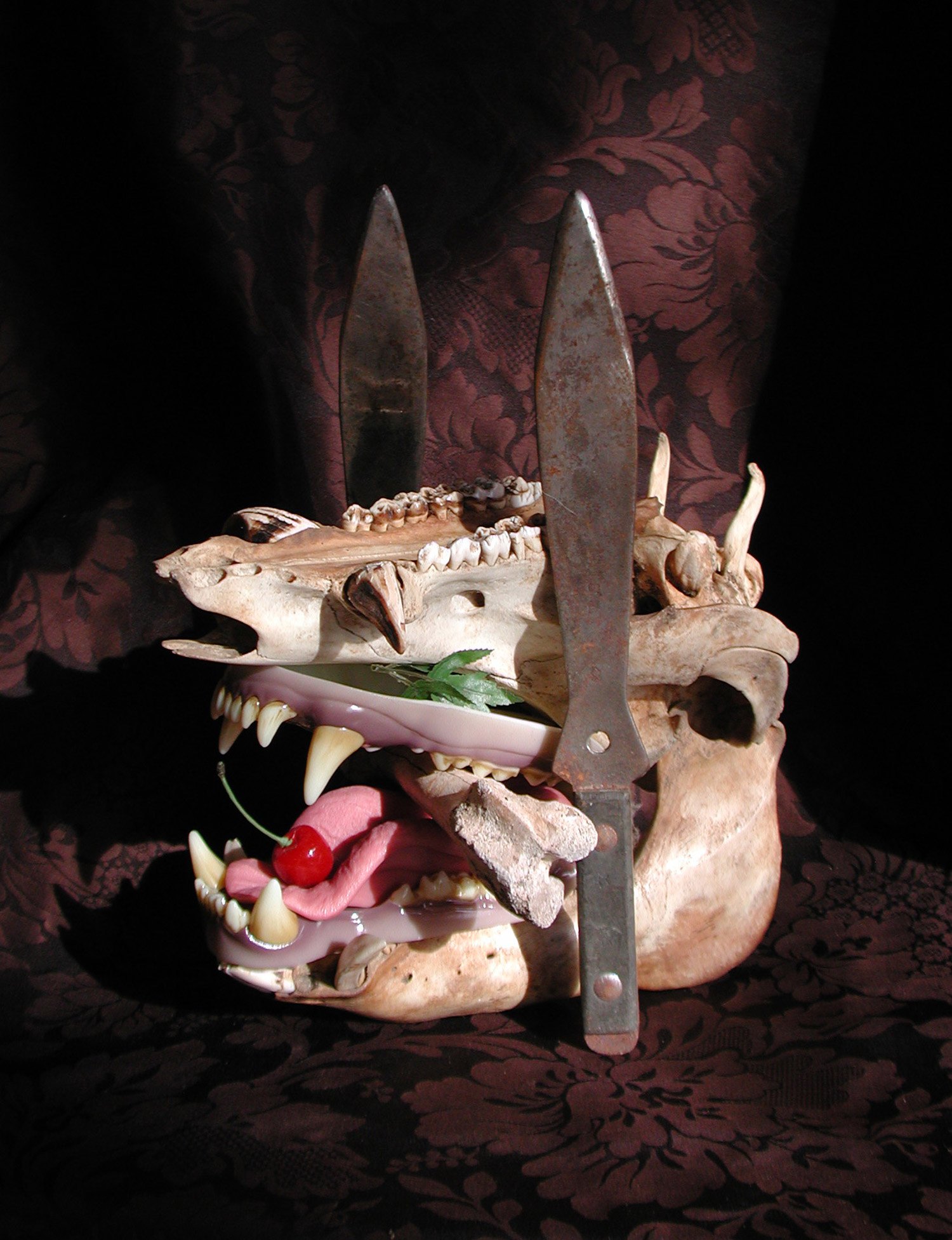 Scott Hove, Cake Fangs - pig tooth cake