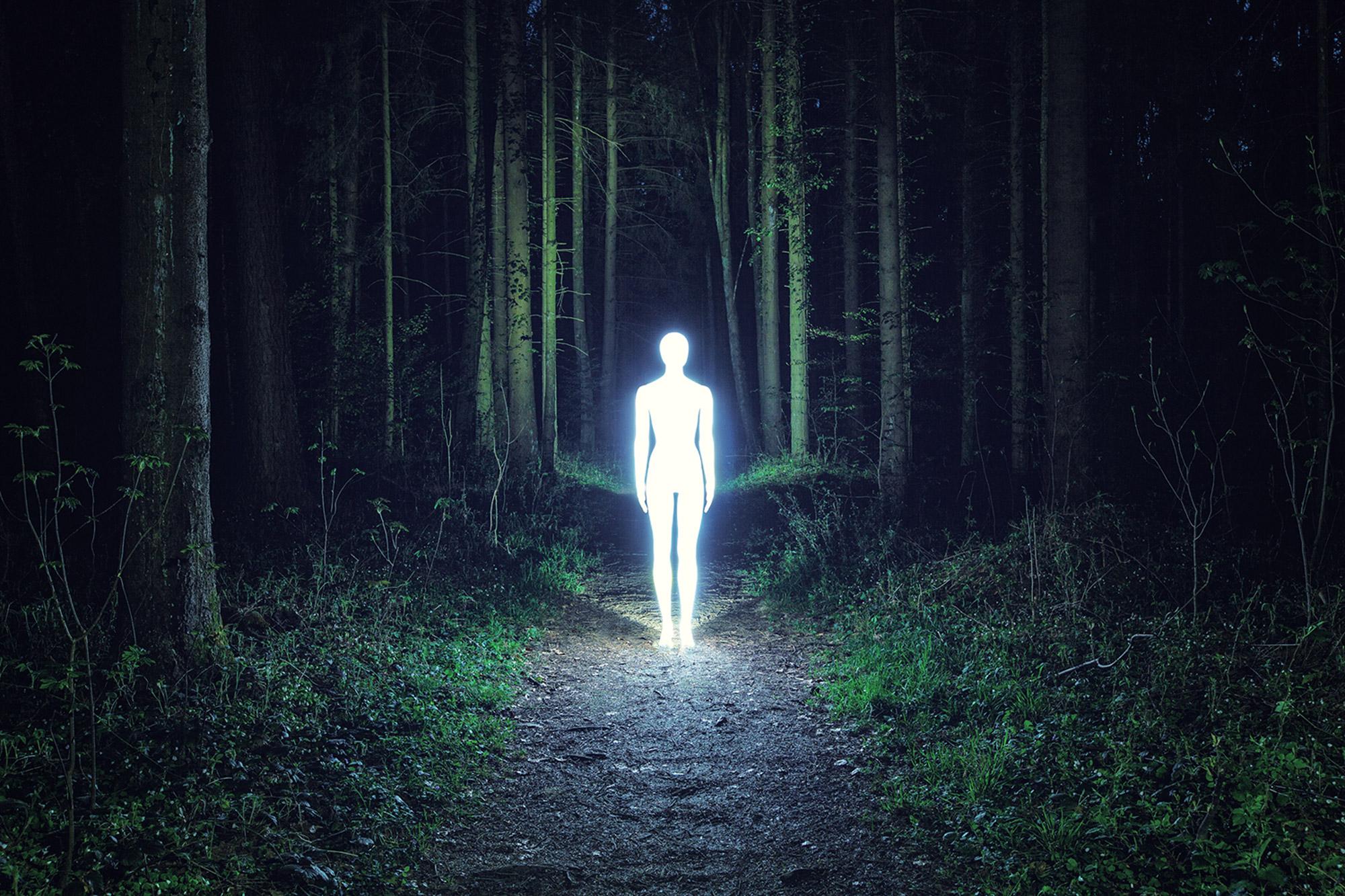 Severin Ettlin, HOMOLUX - illuminated body on forest path