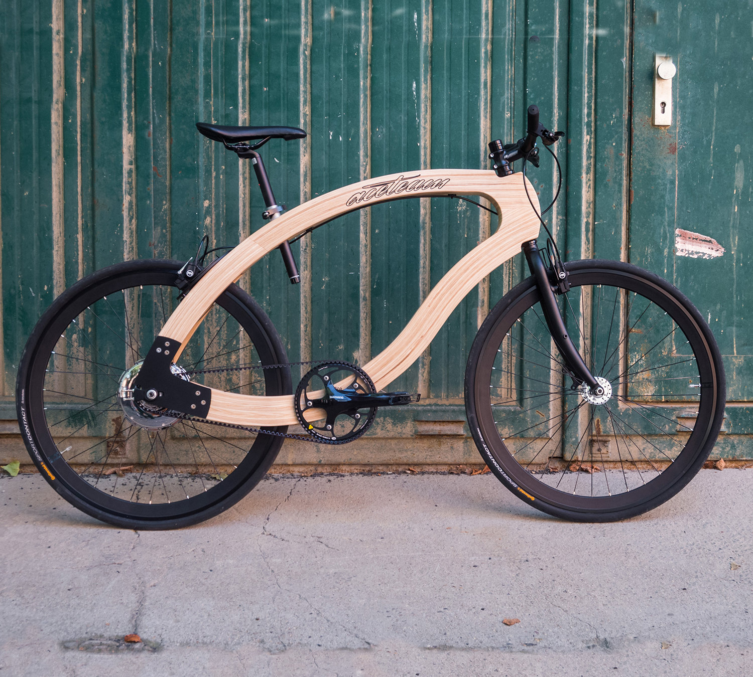 wooden ebike Science meets Sustainability by Matthias Broda, aceteam