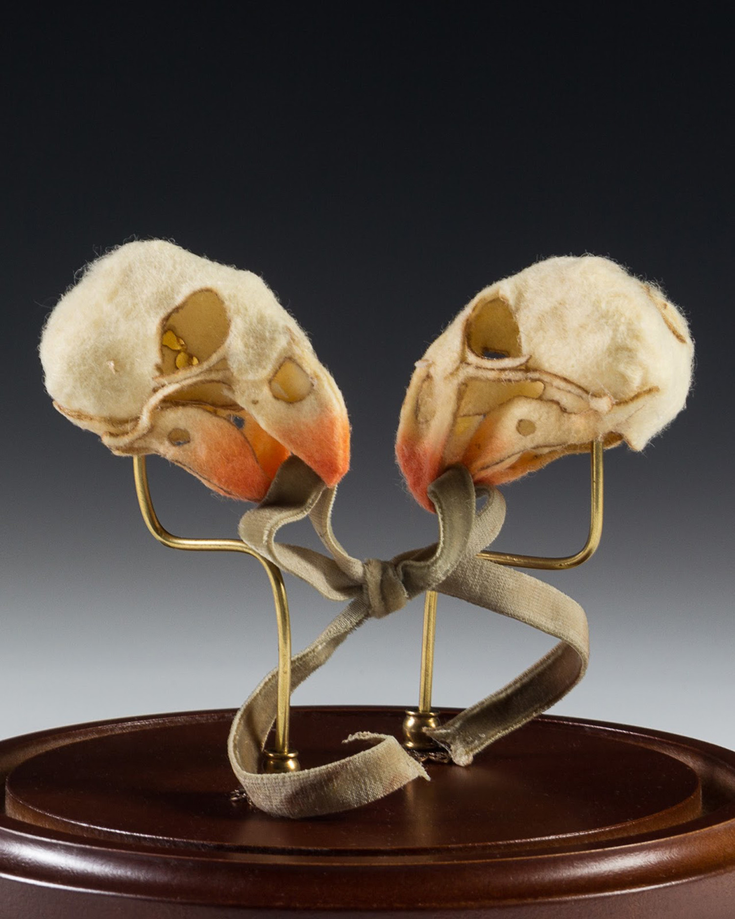 two skulls, by Lana Crooks -