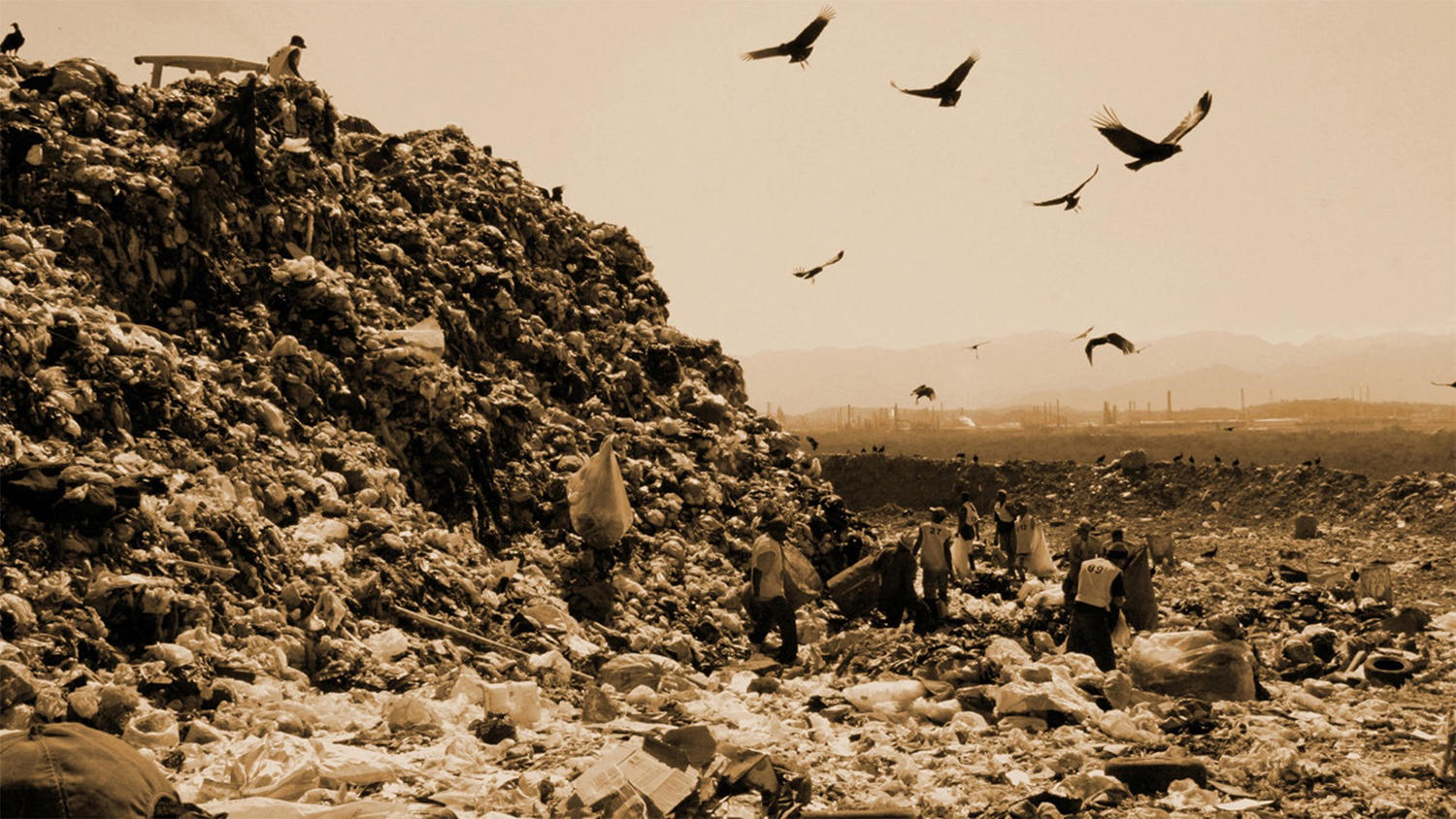 waste land, shot taken in brazil