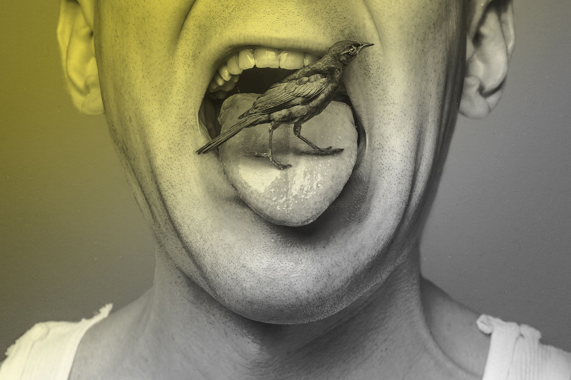 bird in mouth, portrait, scene360 awards