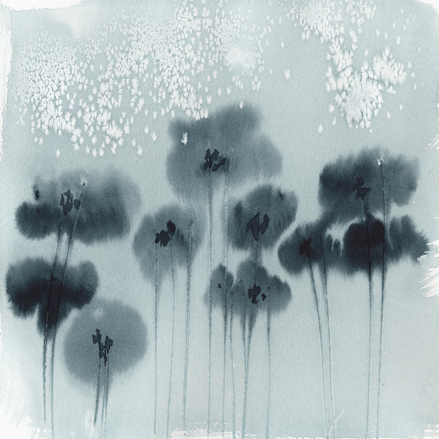 shadow poppies by holly holder, blind artist