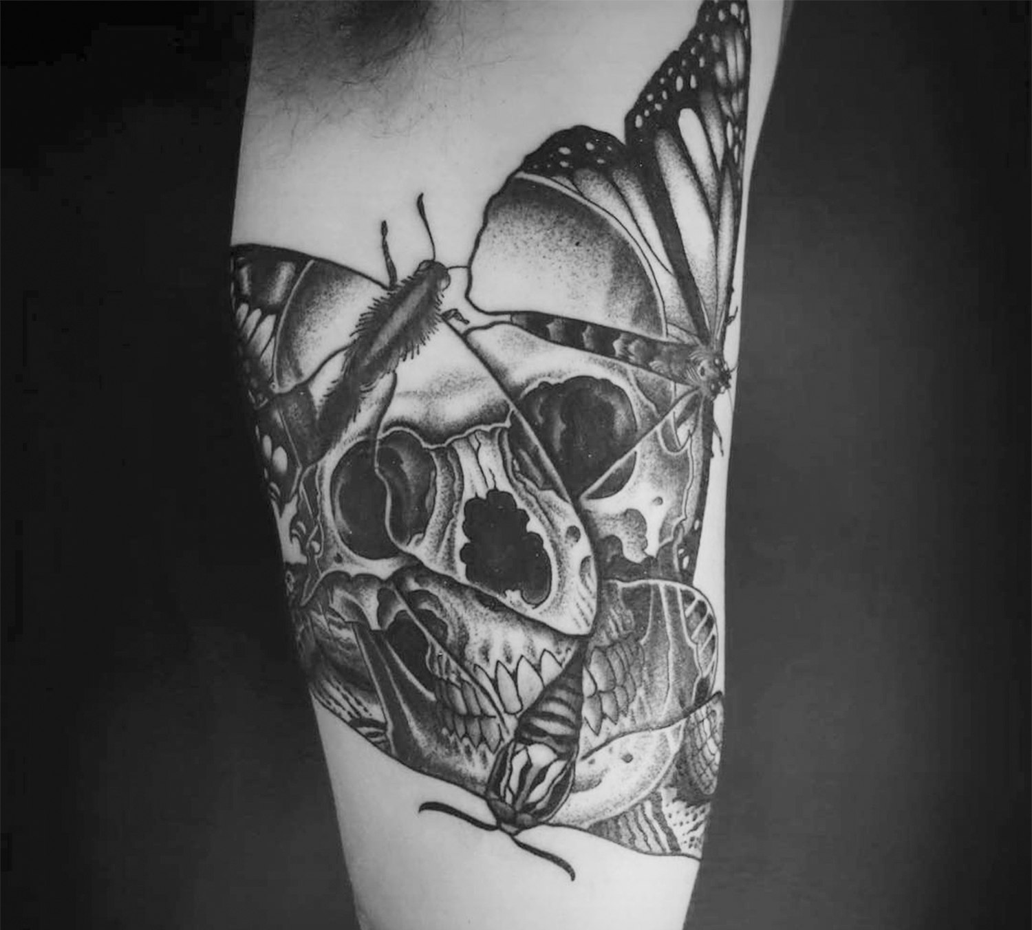 optical illusion moth tattoo, skull, by OKED