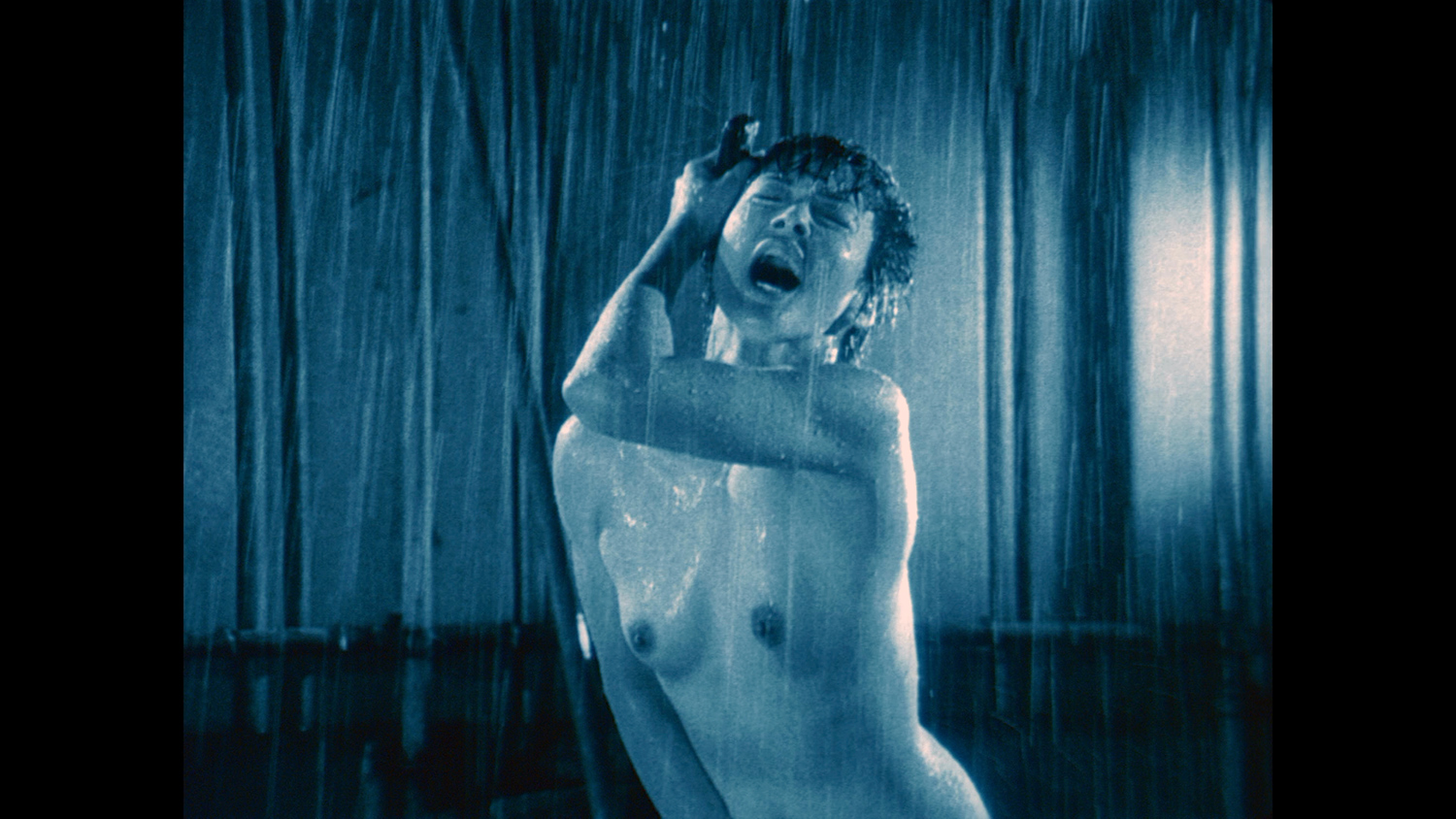 Erotic Foreign Films - A Snake of June, naked in the rain