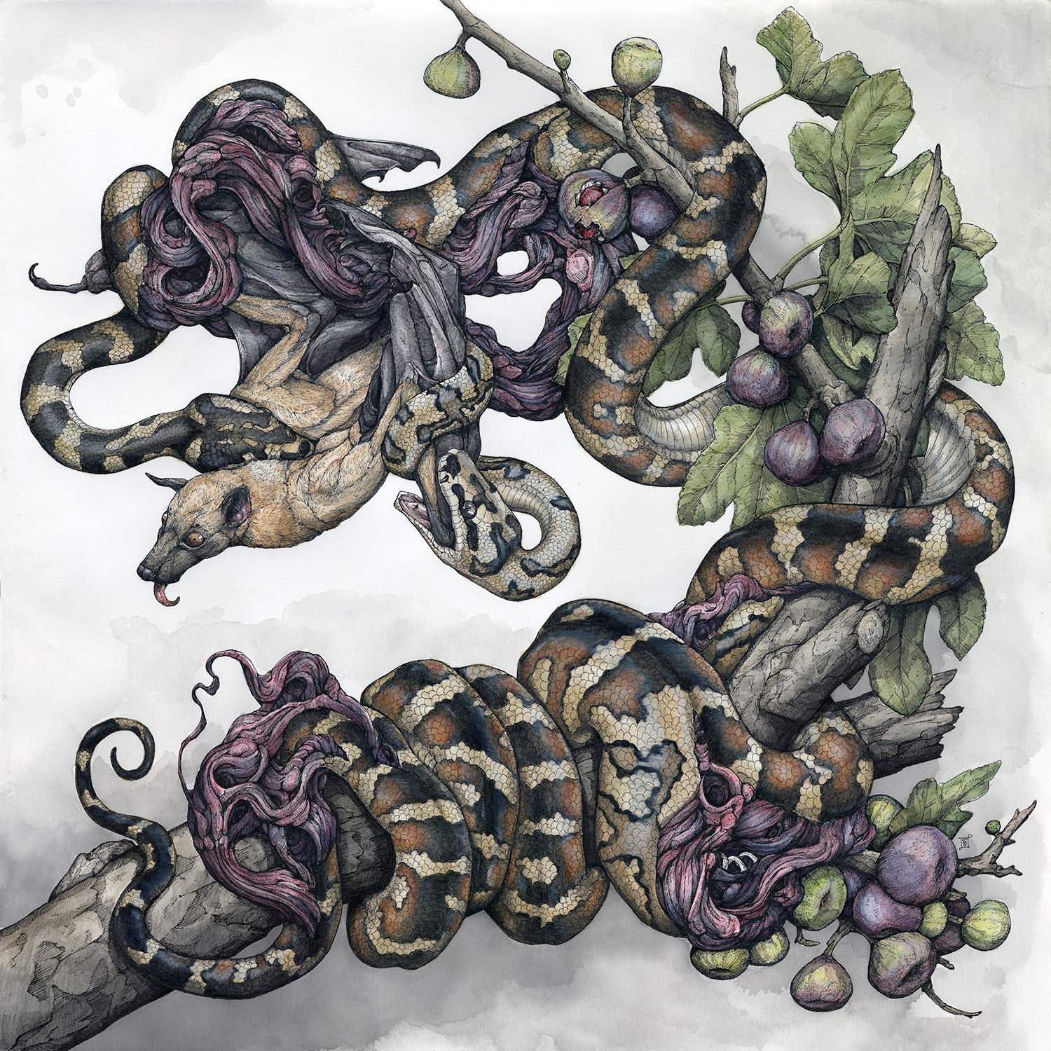 Lauren Marx - untitled commission, snakes