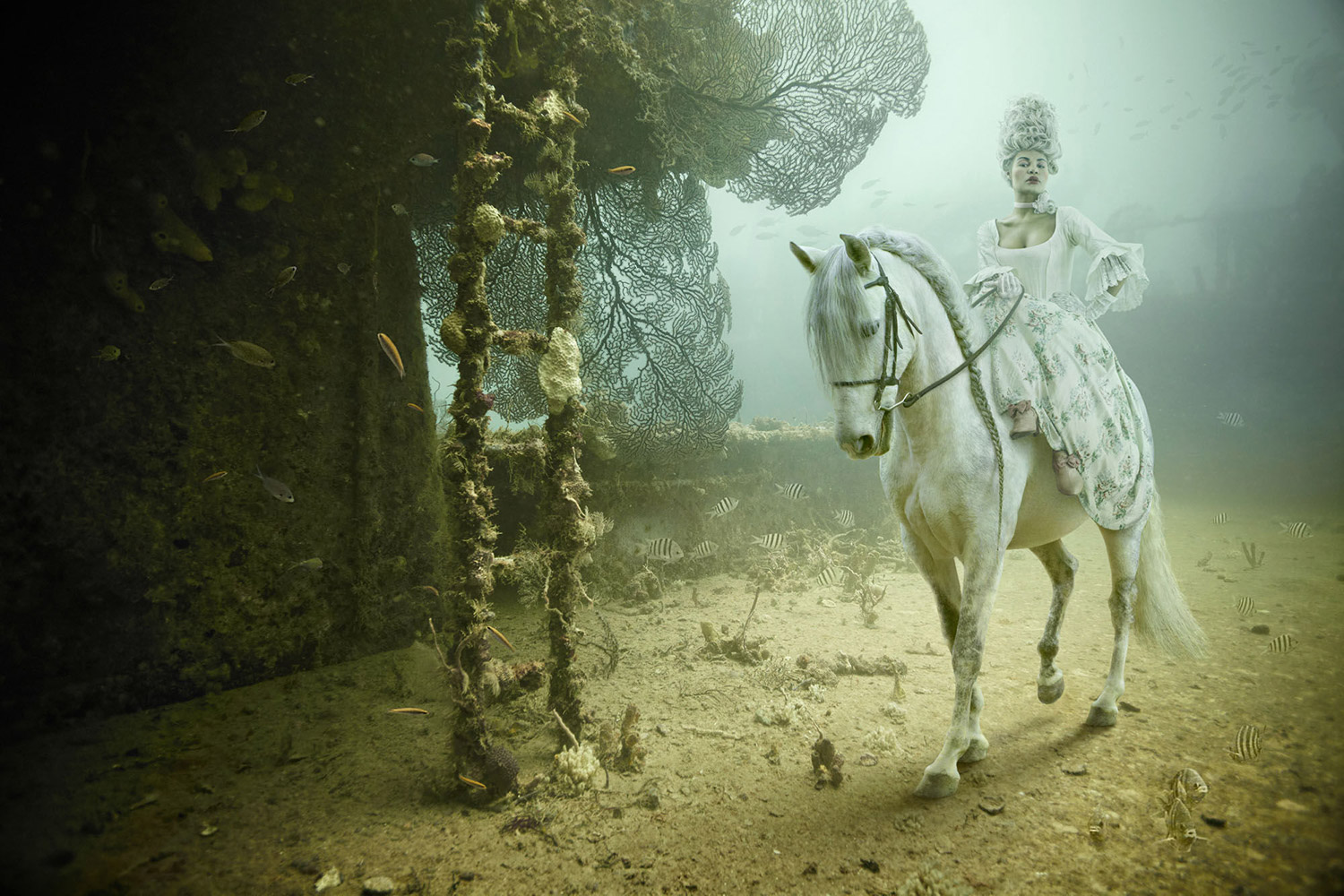 Andreas Franke - The Sinking World, woman on horse