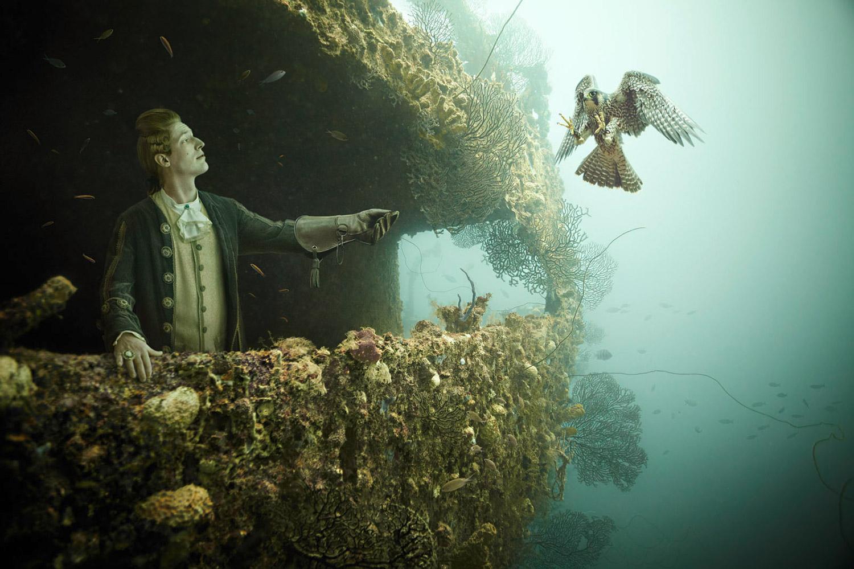 Andreas Franke - The Sinking World, falcon