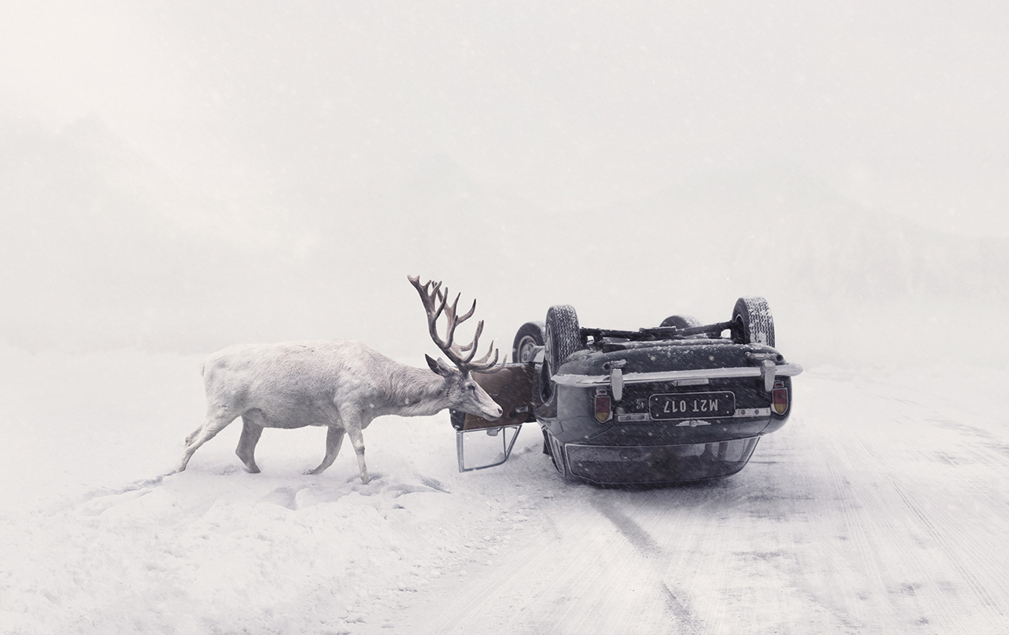 Sorrow, Healing, and Peace: Visuals by Martin Stranka