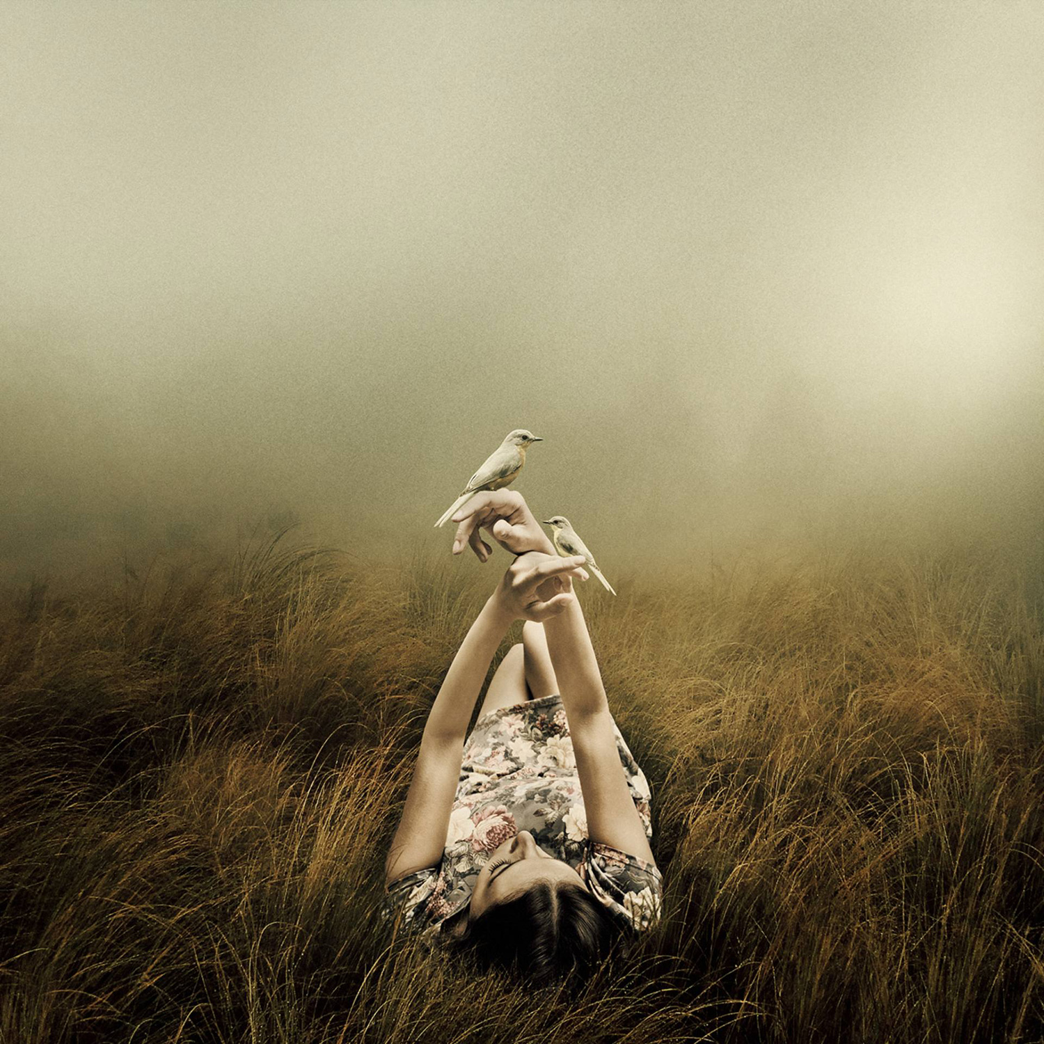 Martin Stranka - Far From the Rivers