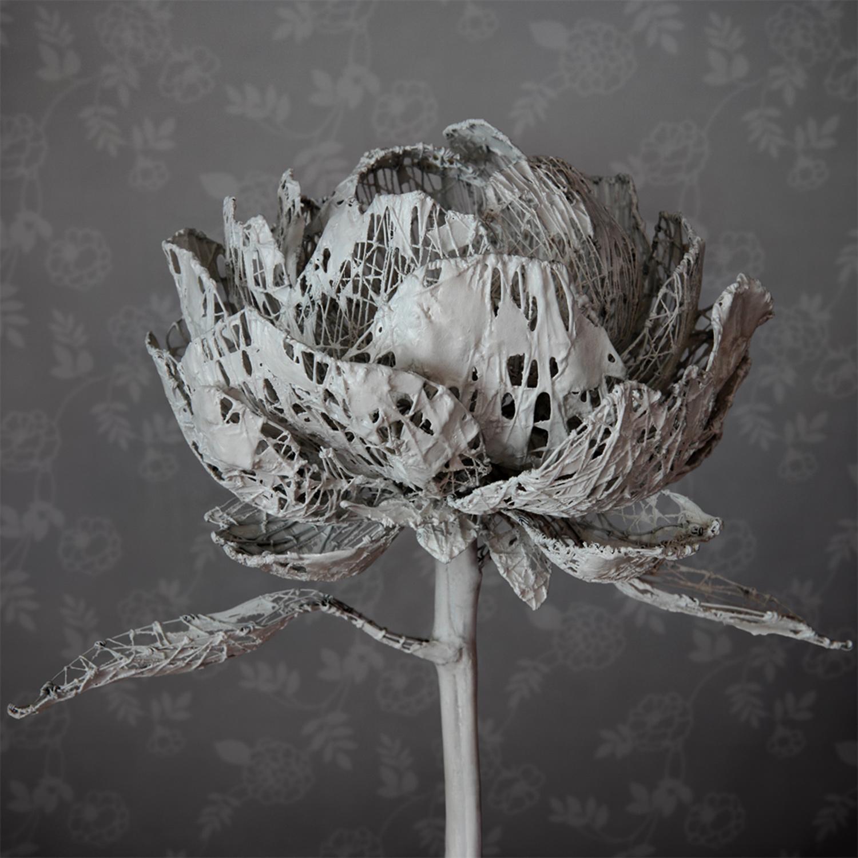 Yuichi Ikehata - Fragment of LTM, memory, rose
