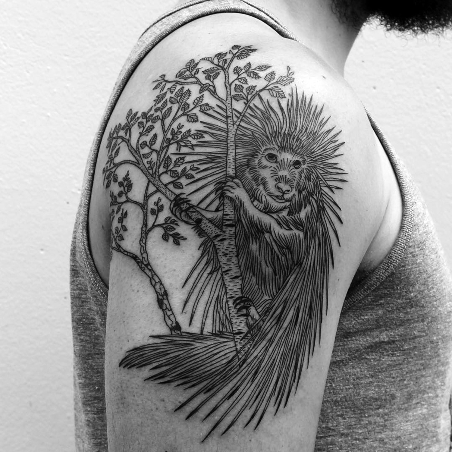 porcupine tattoo on arm