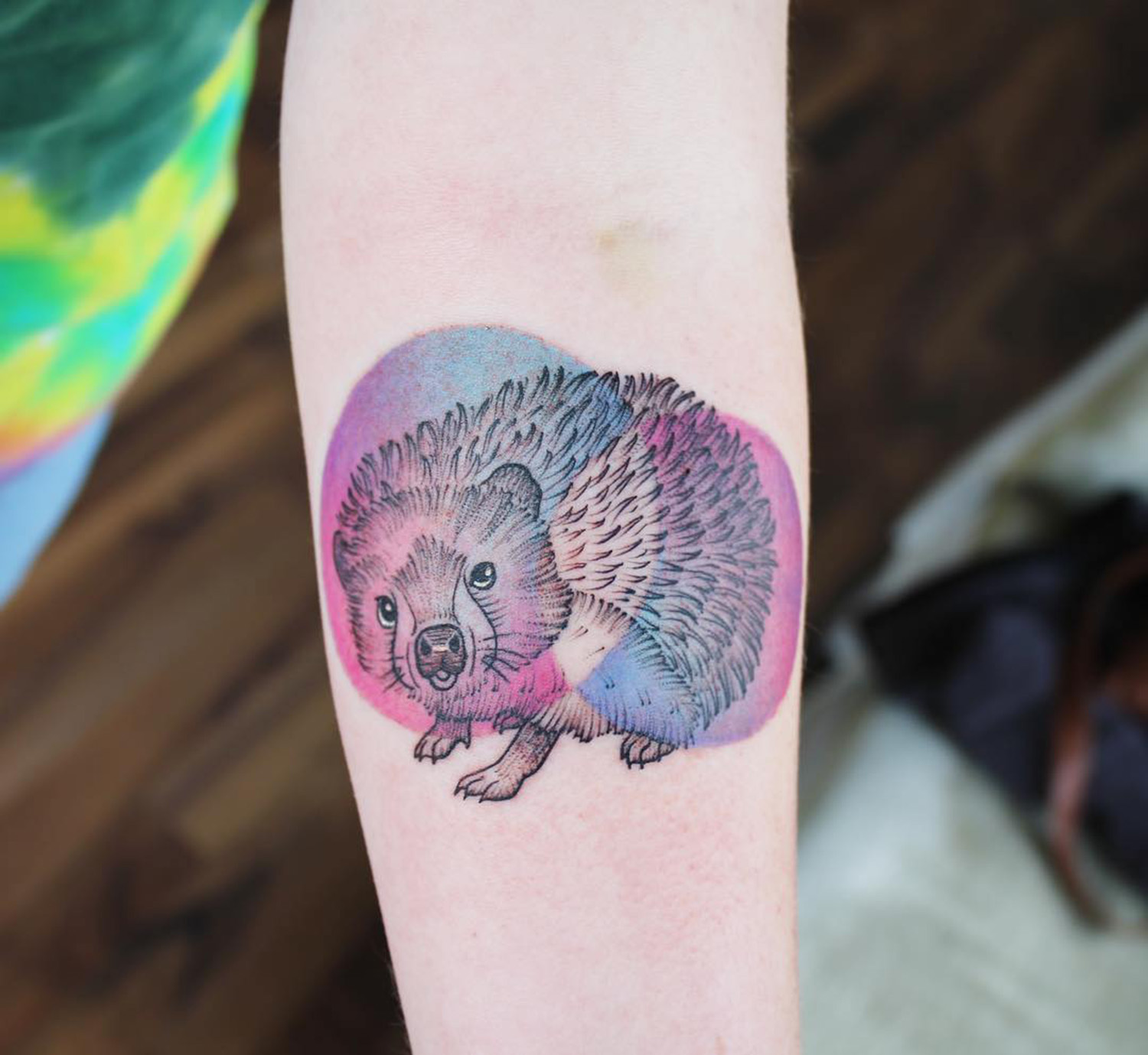 Hedgehog with gradient accent
