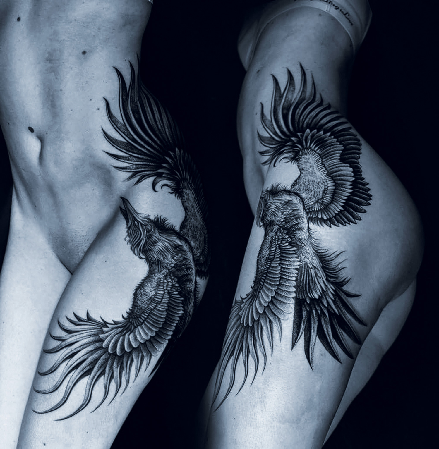 Placide Avantia - bird tattoo
