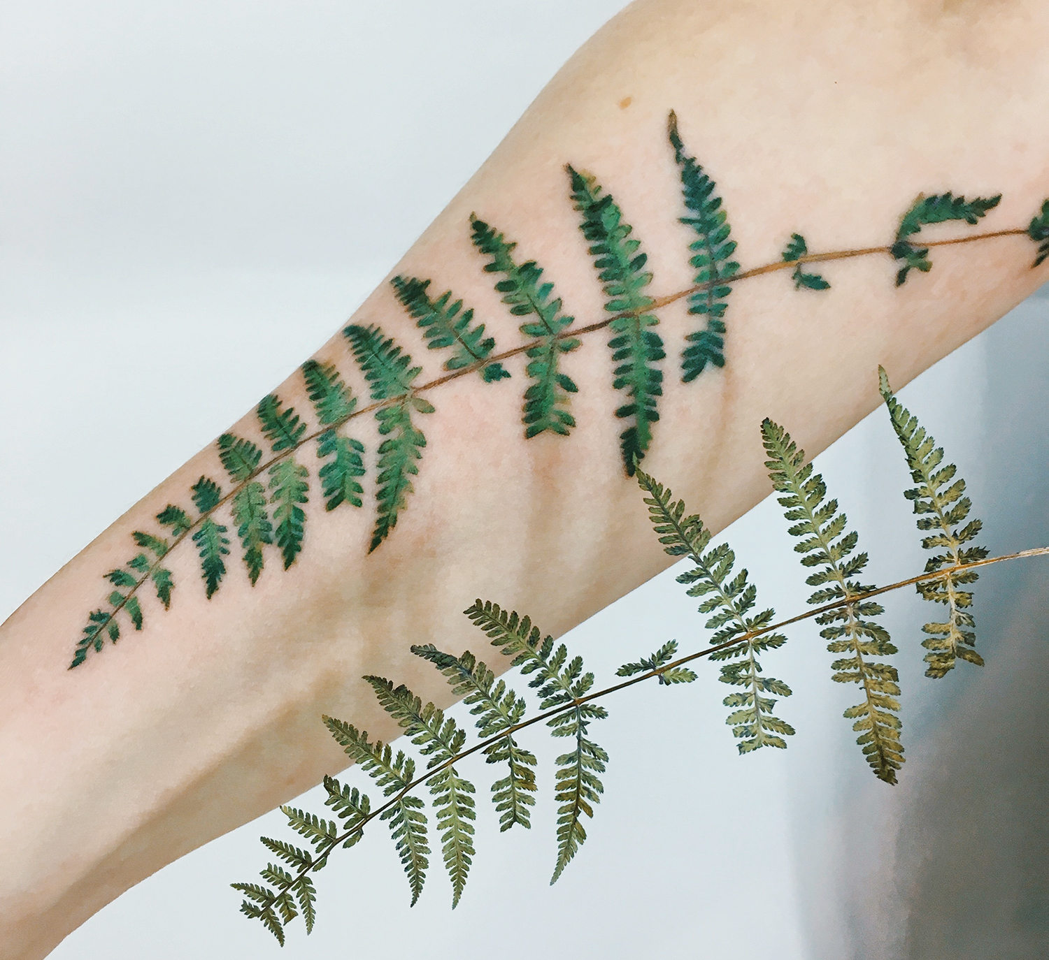 fern tattoo on arm