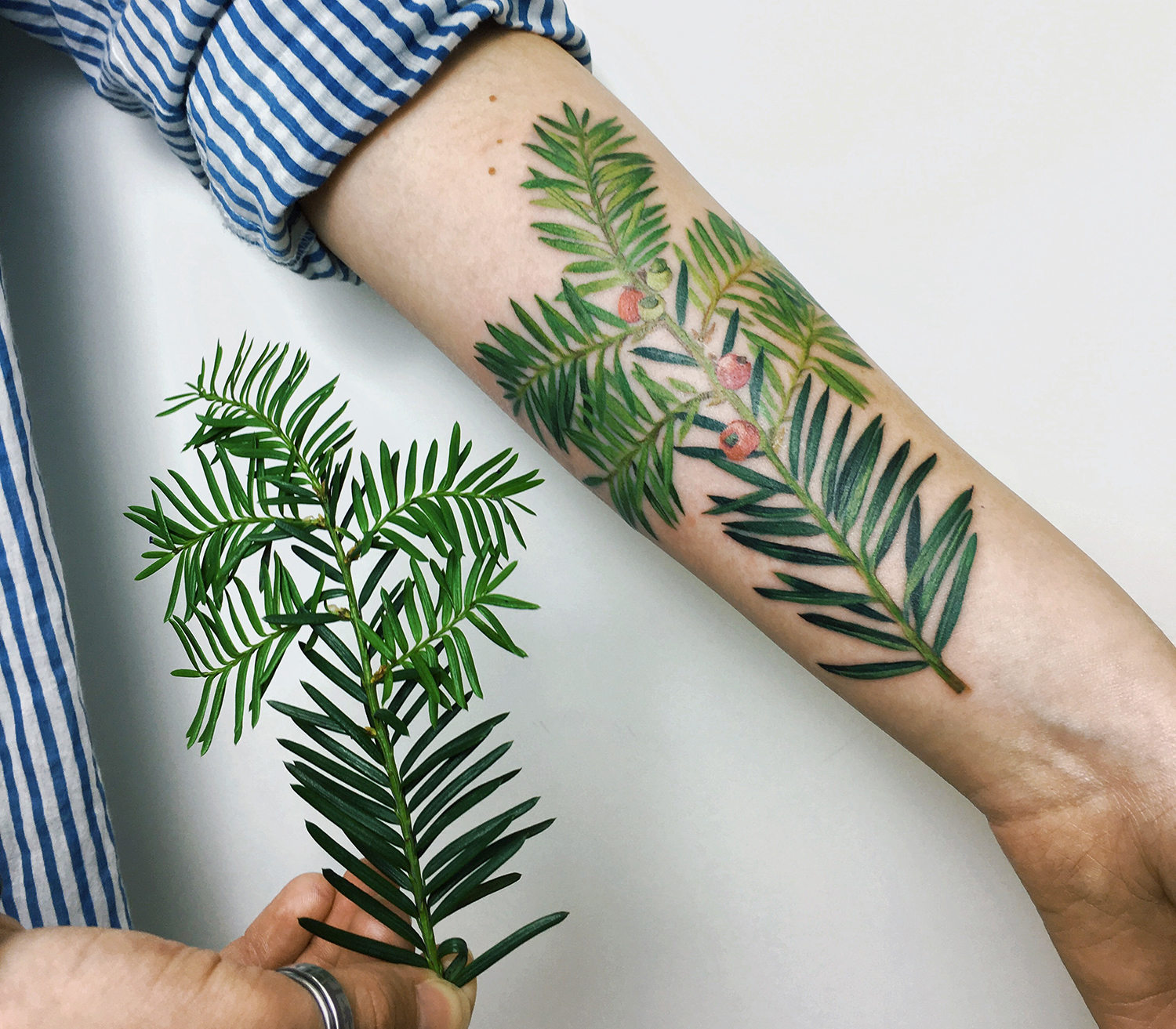 green plants on arm, tattoo