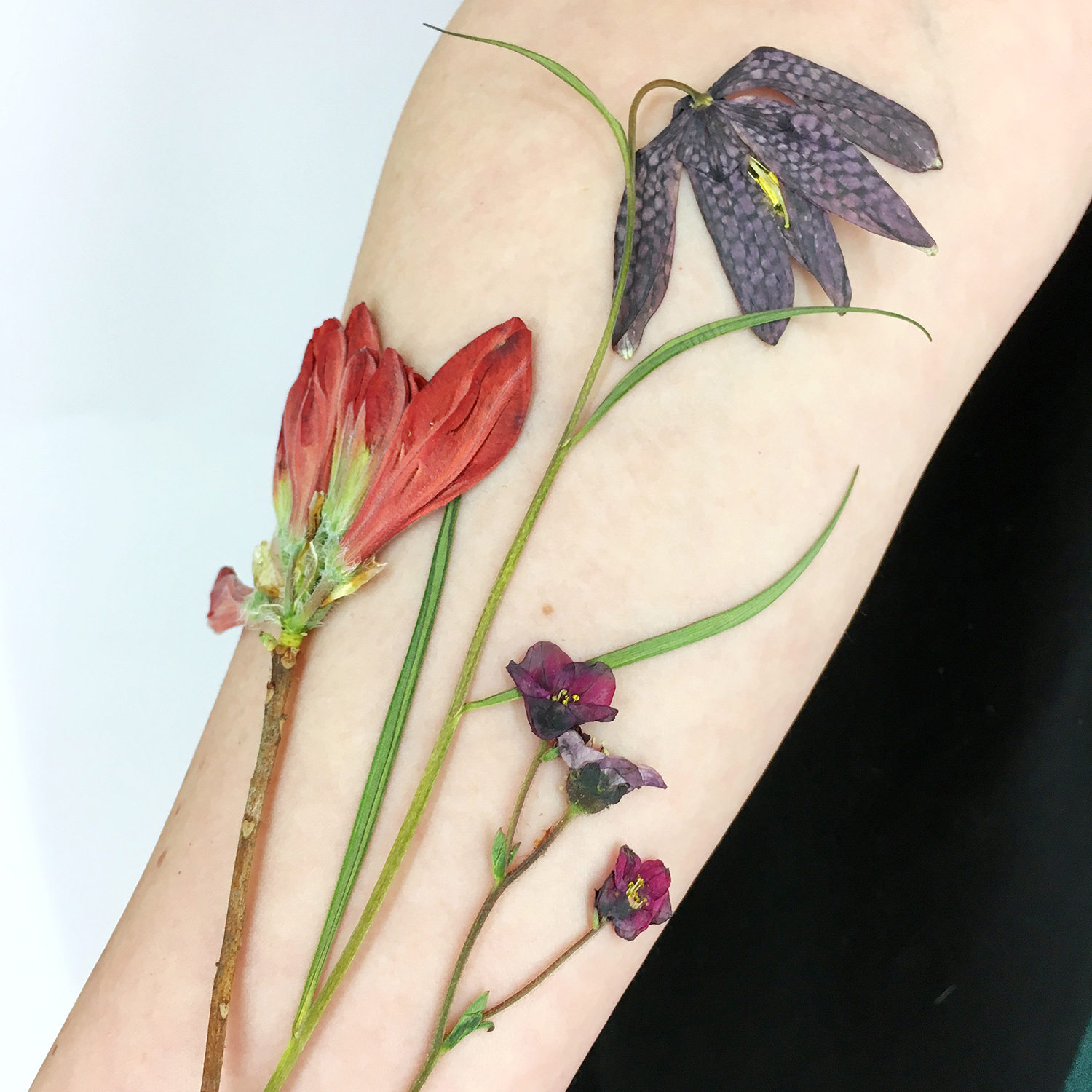 dried flowers on skin, tattooing technique