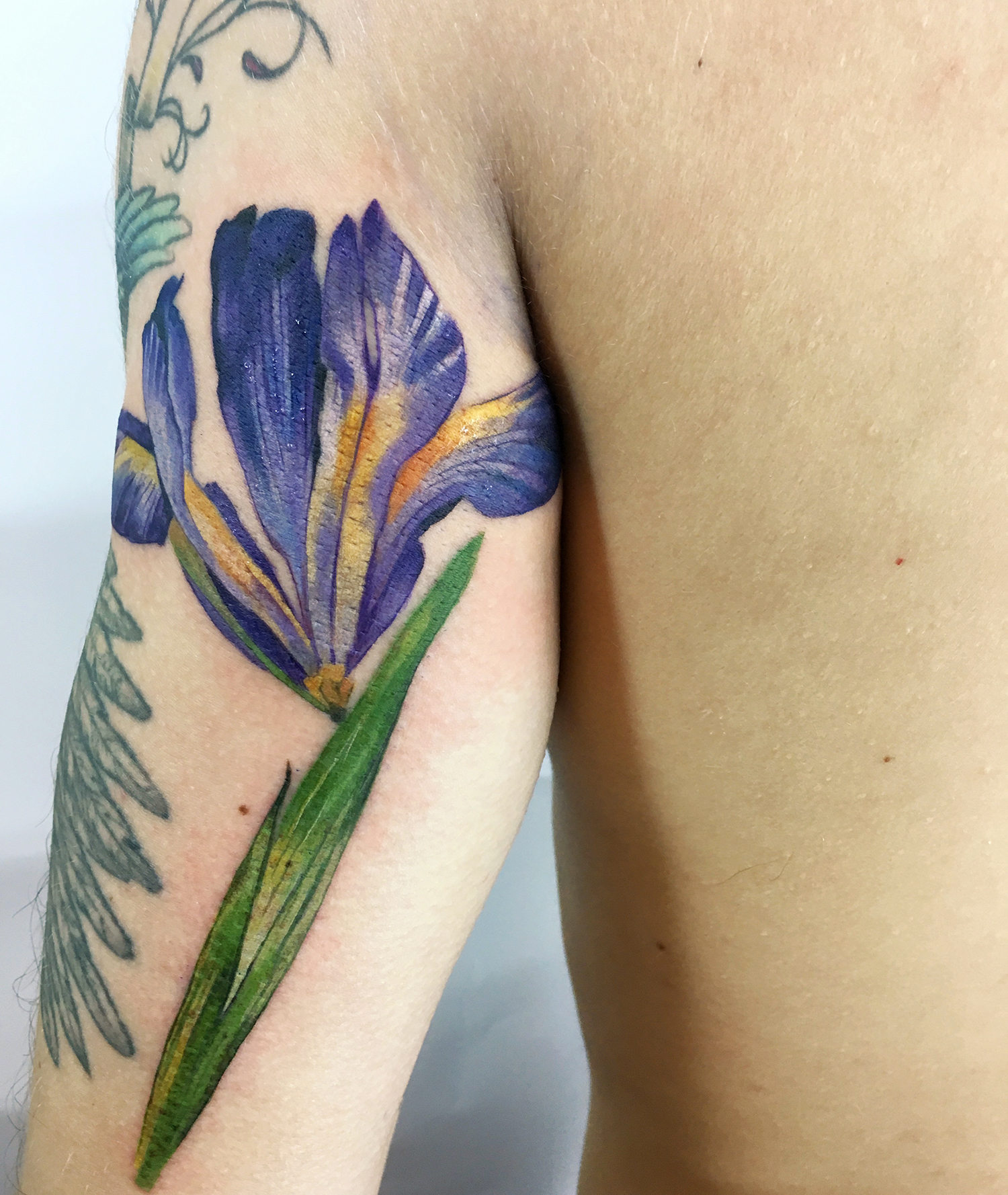 purple flower on arm, live leaf