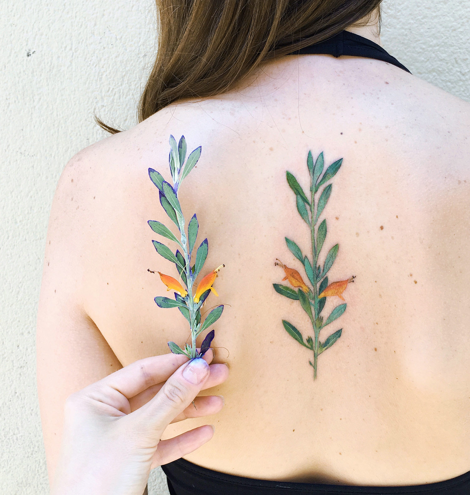 Plant tattoo on back by rit kit