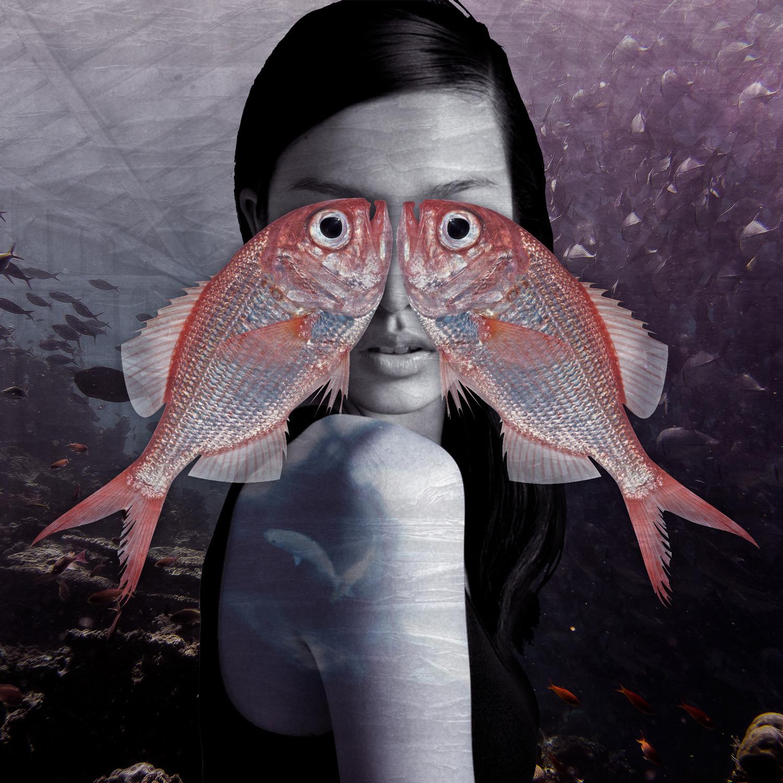 Fate Troppo Belle - fish eyes