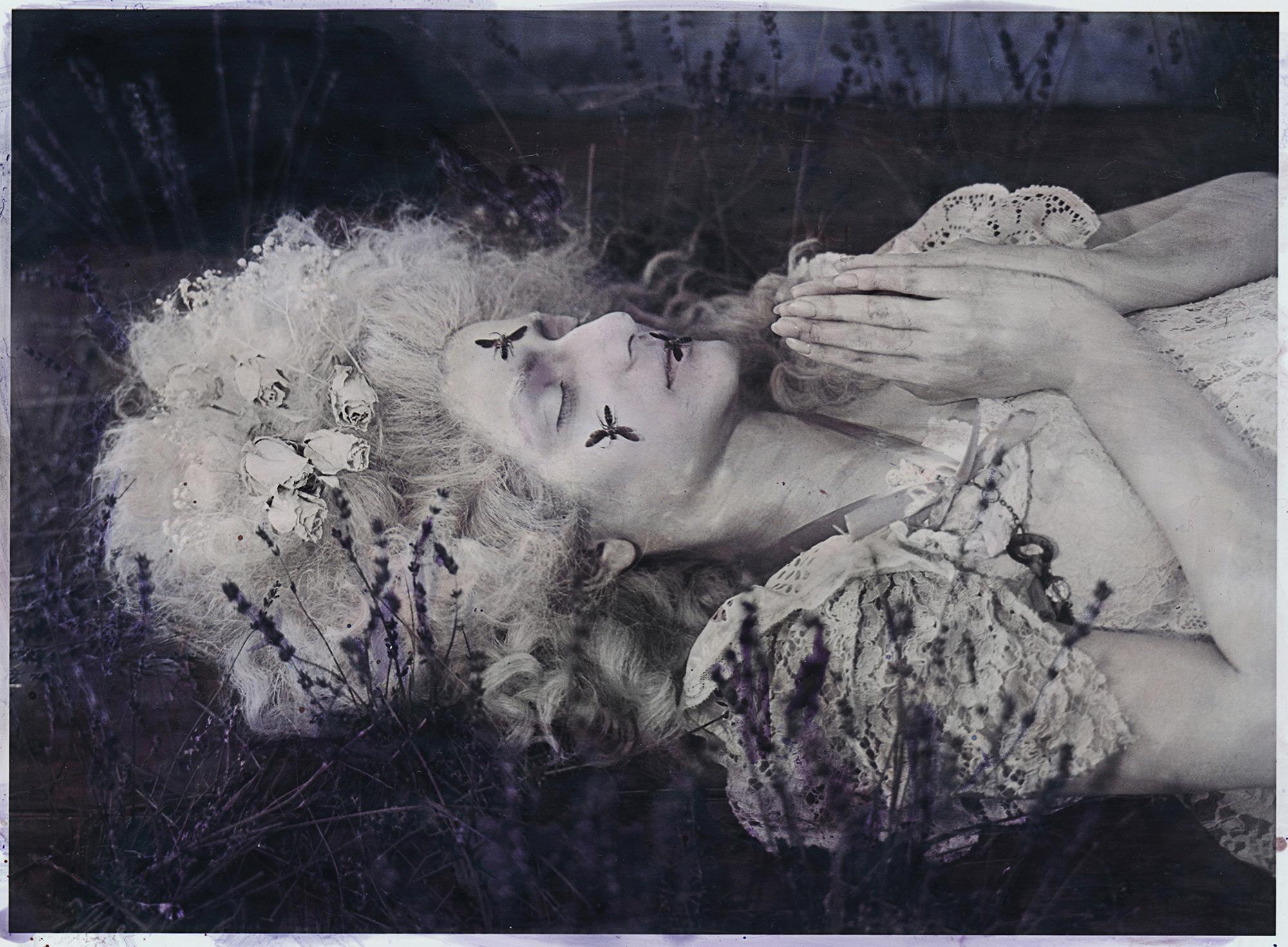 Katie Eleanor, Tigerlily II - lying down