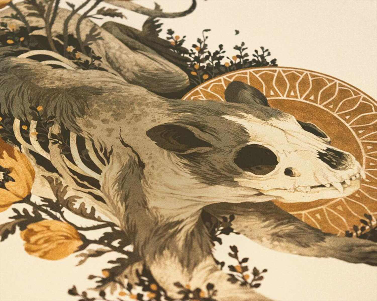 Detail view of partial animal skull with flowers