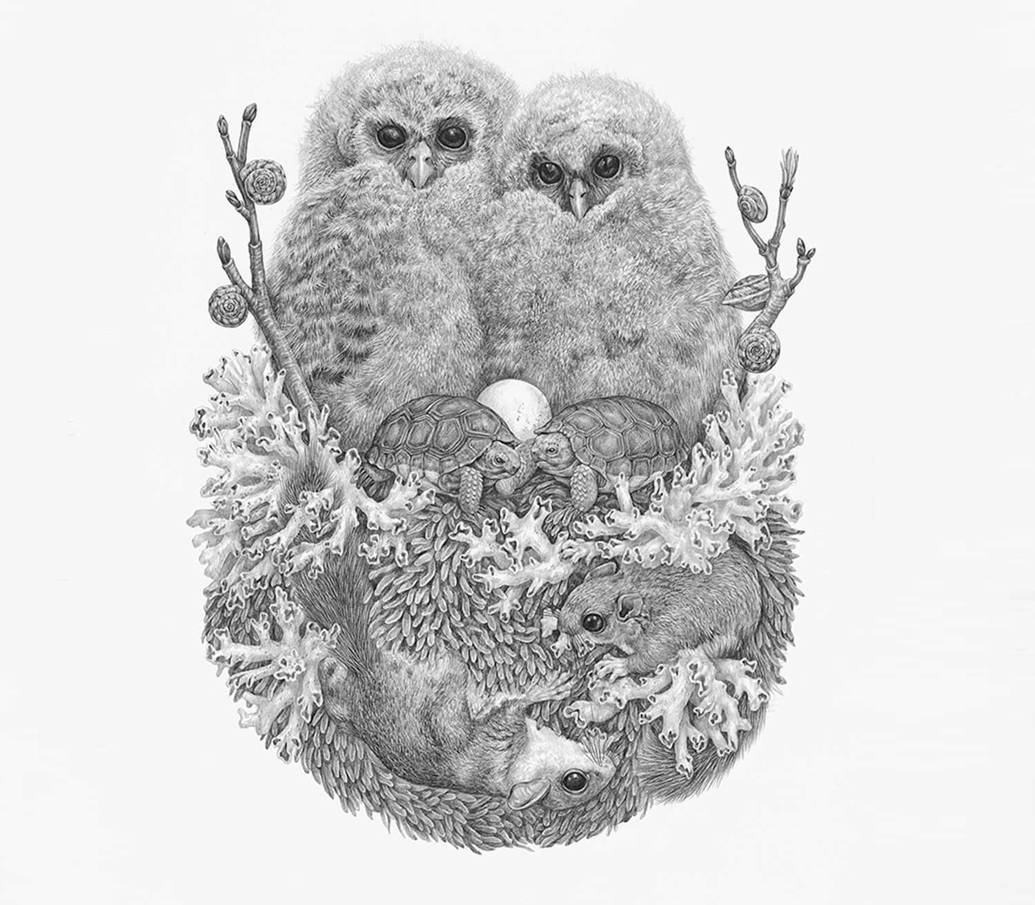 Drawing of two birds atop other land creatures