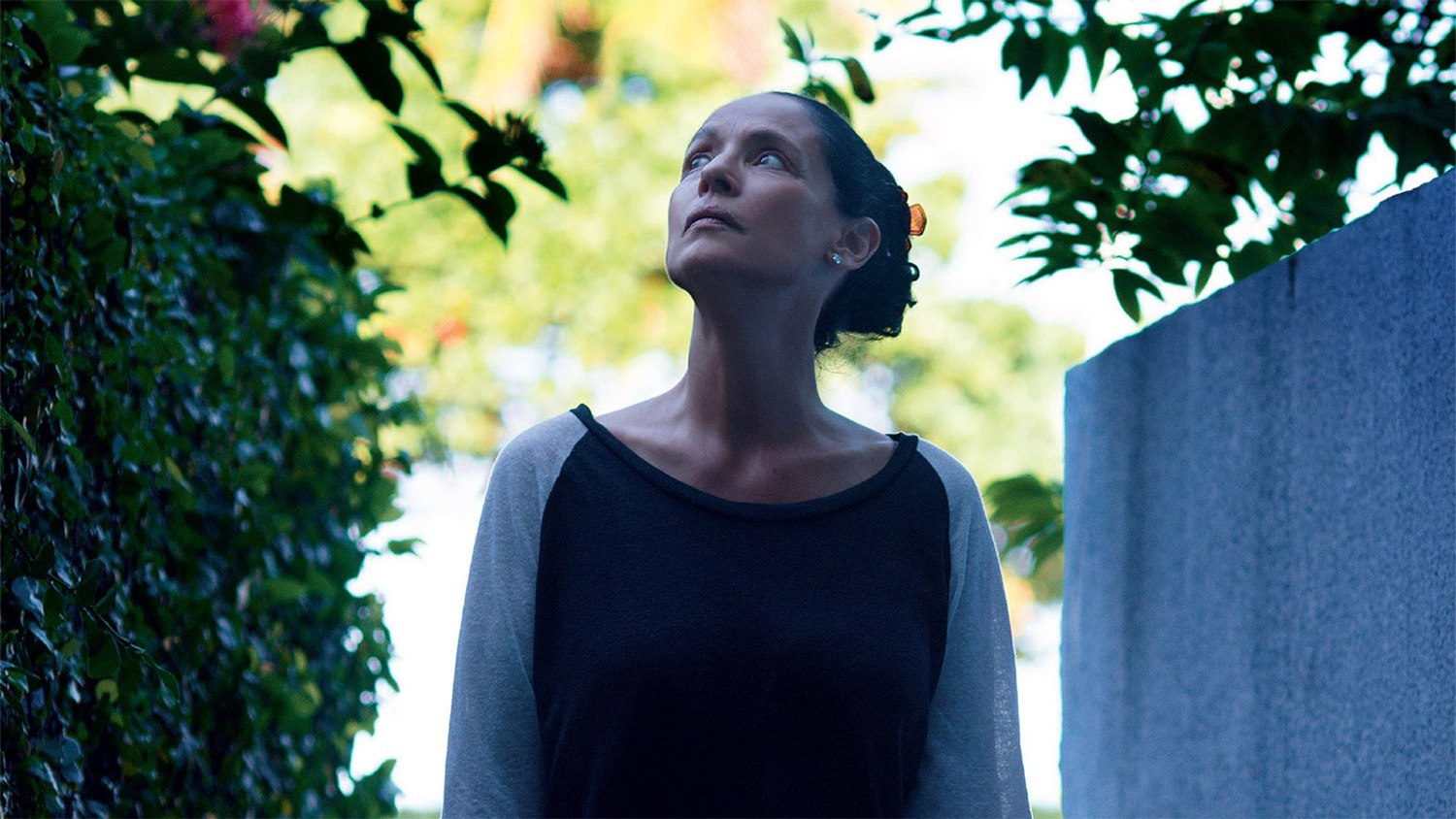 sonia braga in movie Aquarius