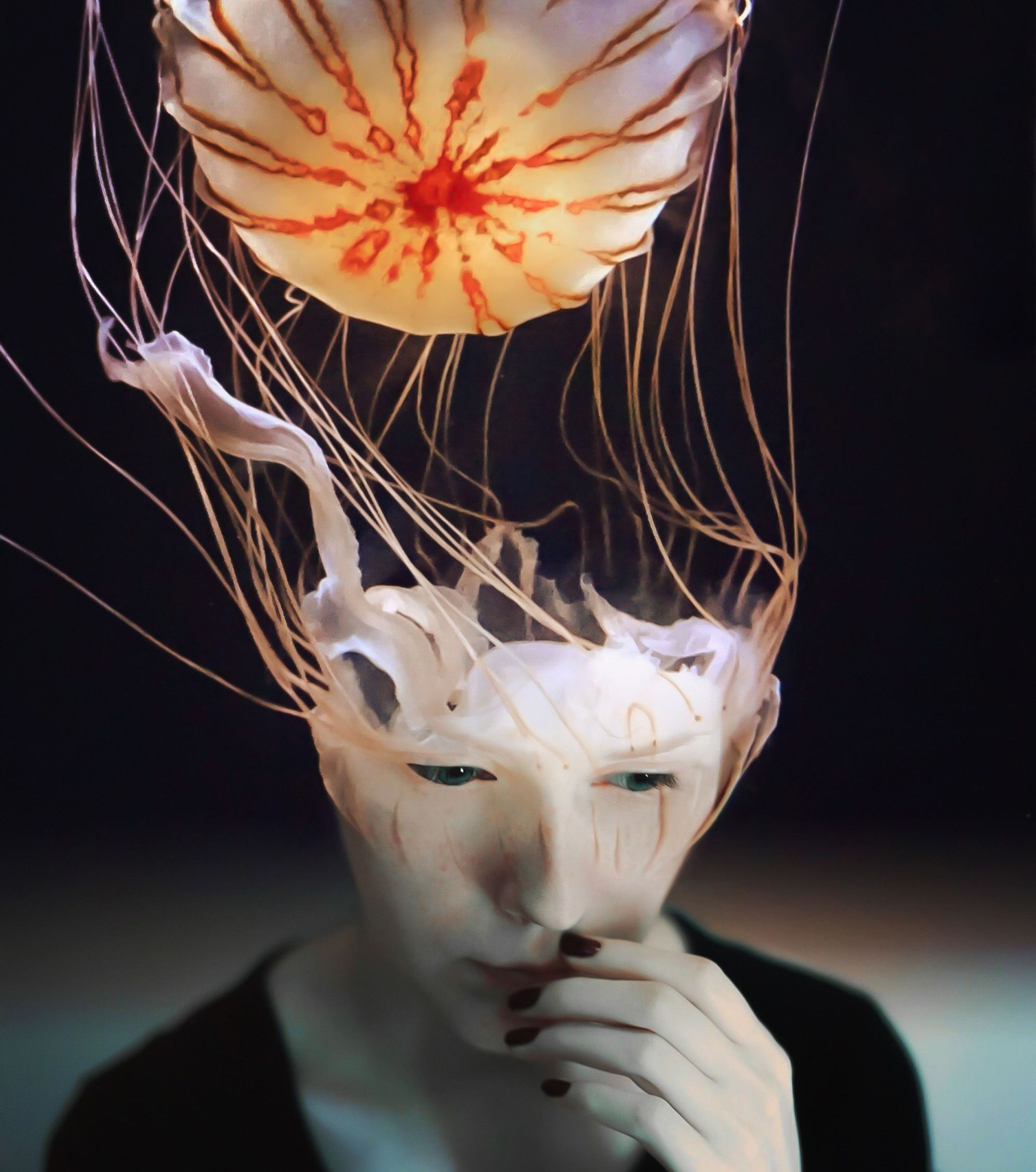 Scyphozoa, digital art, collage by cash mattock