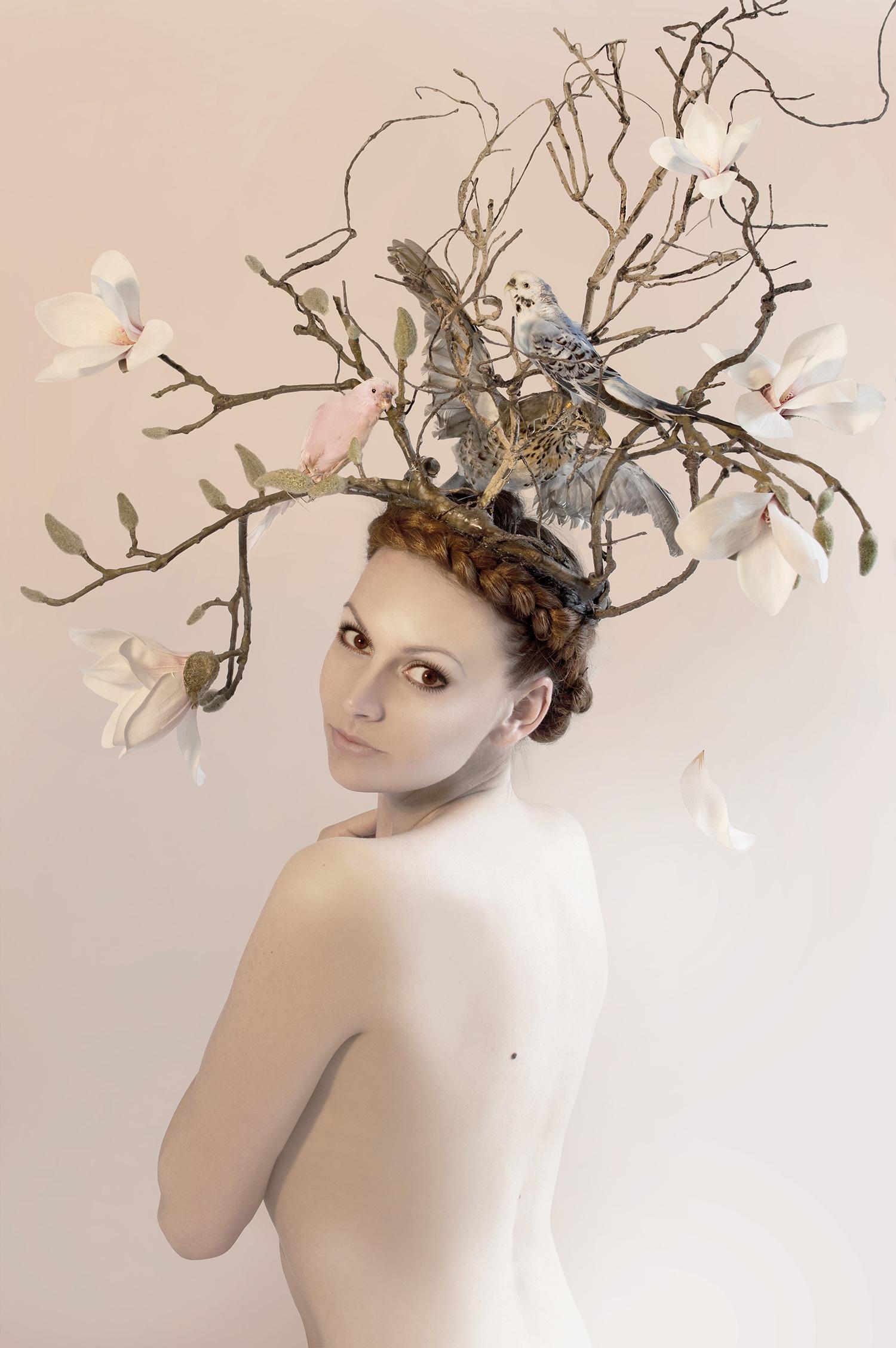 Delphine Celcig - Prelude