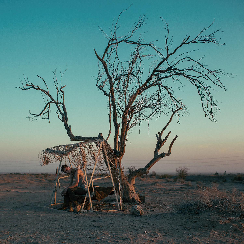 Brendon Burton, Western Gothic - dead tree