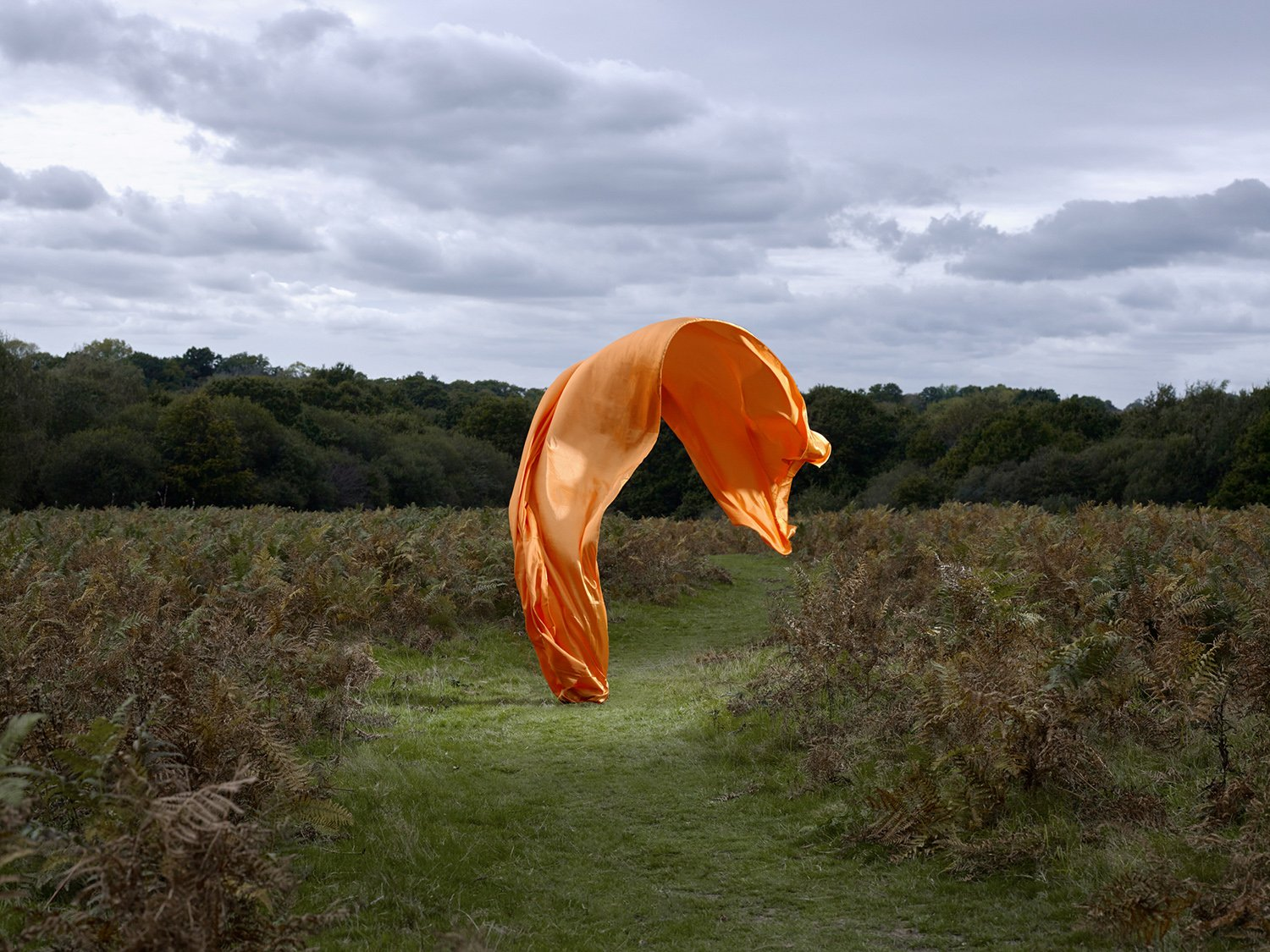 Transient Sculptures. orange satin sheet in field