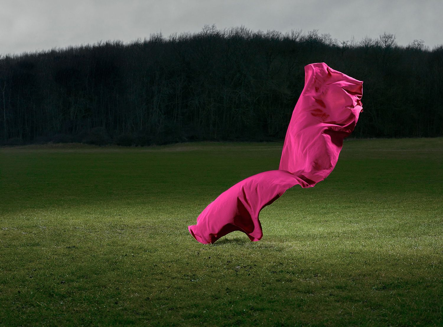 Transient Sculptures, pink sheet in green field