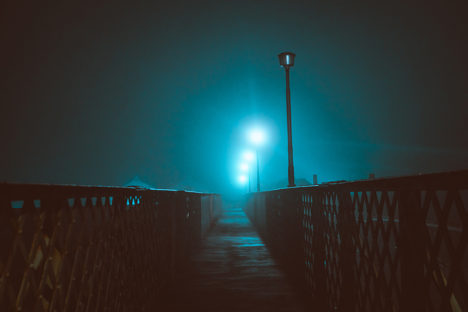 Elsa Bleda - Nottingham Road - fence