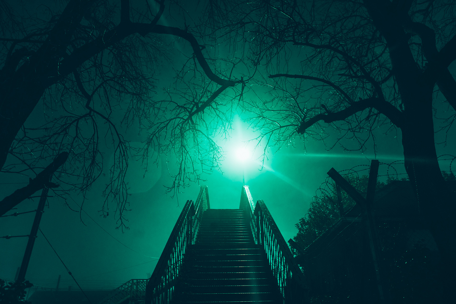 Elsa Bleda - Nottingham Road - stairs