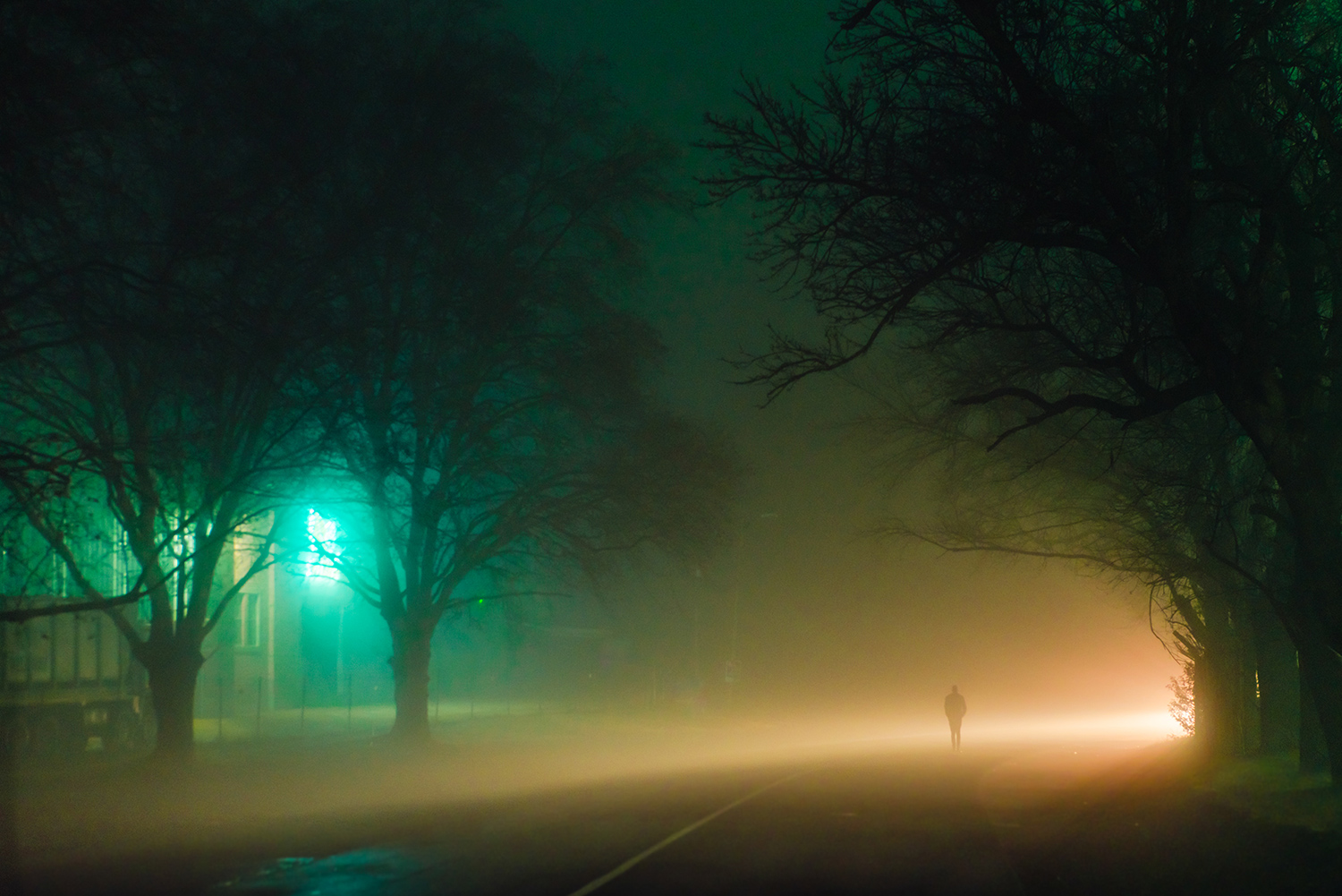 Elsa Bleda - Nottingham Road - person alone