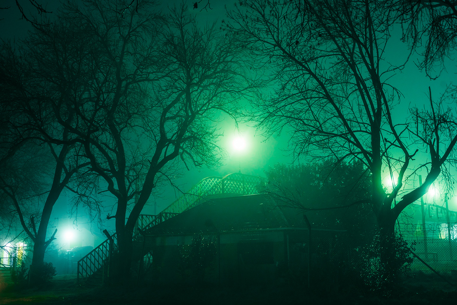 Elsa Bleda - Nottingham Road - moon sun