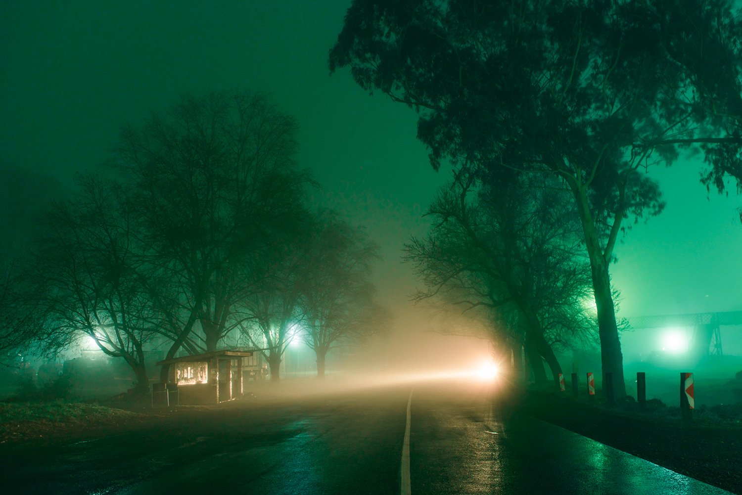 Elsa Bleda - Nottingham Road - headlights