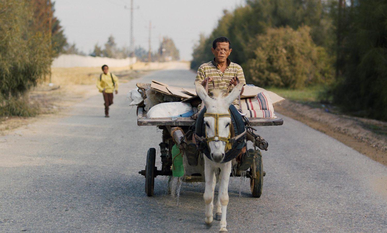 man riding a mule, Yomeddine