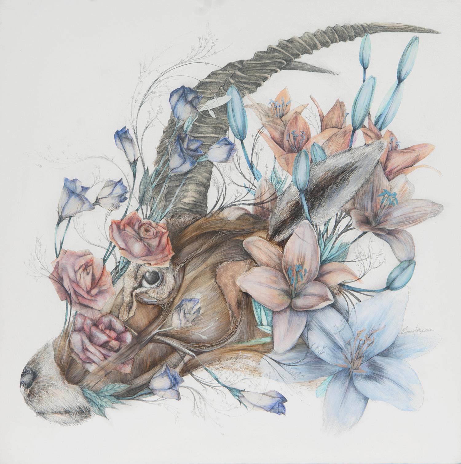 Nunzio Paci - The Awakening of the Mountain Lily