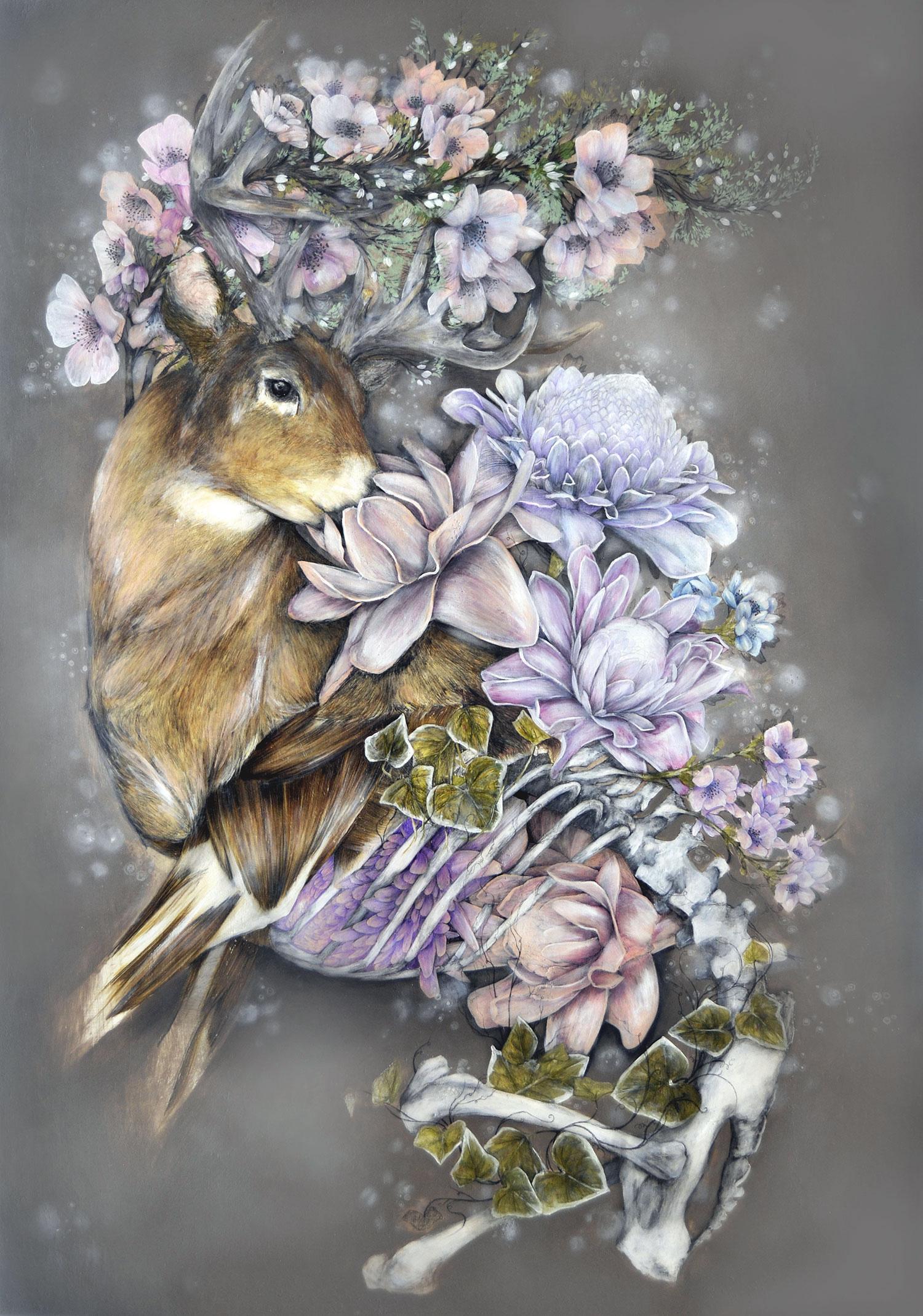 Nunzio Paci - Wild Elingera (Wax Flower)